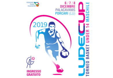 ludeccup 2019